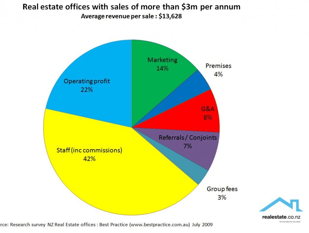 Analysis of top real estate offices in NZ - revenue over $3m - breakdown p&l 2009