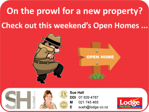 Open Home Post 2