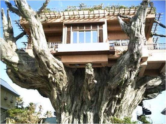 Living at-one with nature